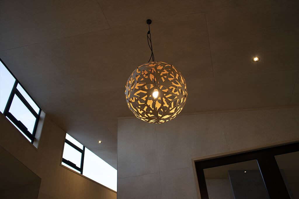 Trubridge pendant and down lights